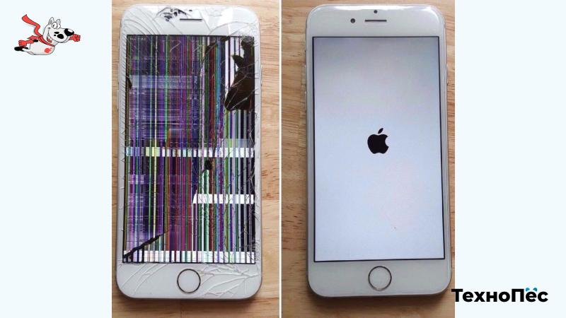 Ремонт iPhone в ТехноПес